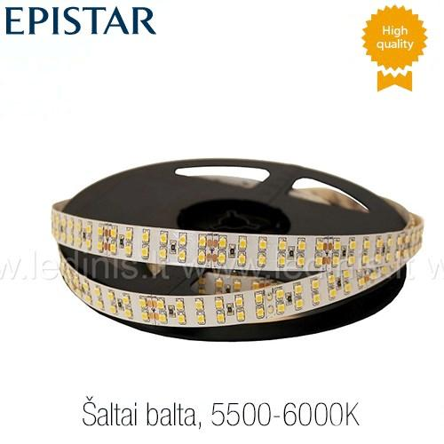 KPU LIGHTING, 19.2W LED juosta 3528 (šaltai balta) (24V)
